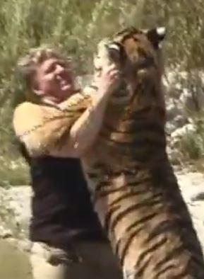 Man wrestling tiger